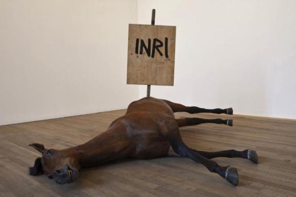 cavallo inri